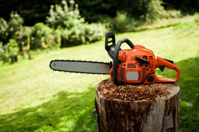 The Best Chainsaws for Landscaping and Harvesting Lumber