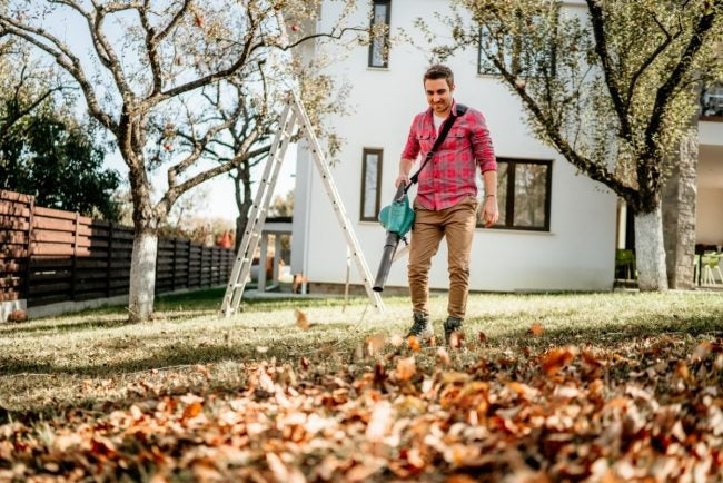 The Best Leaf Blower for Any Yard