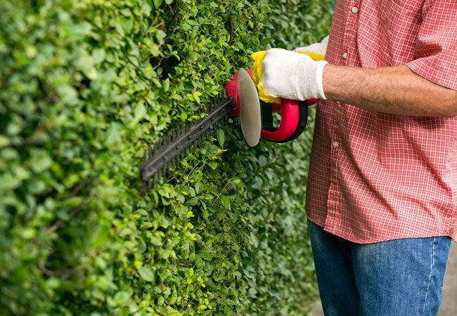 Best Power Hedge Trimmers