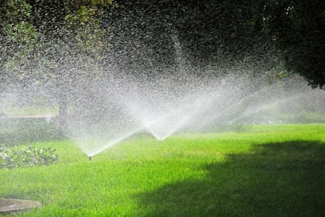 The Best Sprinkler Controller Options