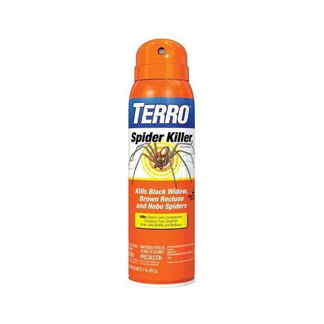 Best Spider Killer Options Terro