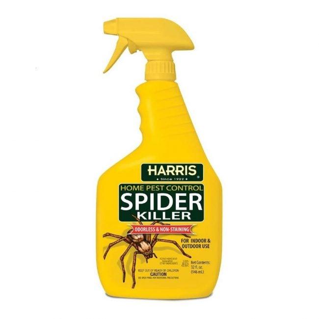 Best Spider Killer Options Harris