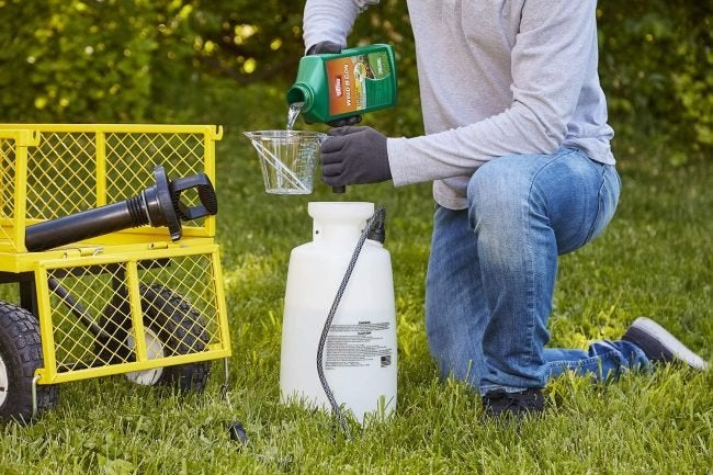 The Best Crabgrass Killer Option